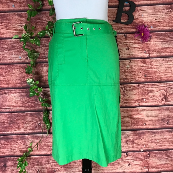 ff824c9dae Chico's Skirts | Chicos Black Label Skirt Size 2 10 12 Green Briar ...
